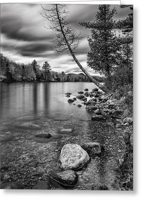 Reflection Of Rocks In Water Greeting Cards - Vermont Groton Ricker Pond Autumn Landscape black and white Greeting Card by Andy Gimino