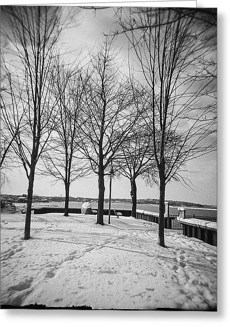 New England Snow Scene Greeting Cards - Vermont Lake Champlain Burlington Spring snow black and white Greeting Card by Andy Gimino