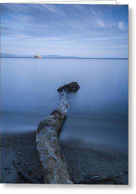 Champlain Greeting Cards - Vermont Lake Champlain driftwood sunrise Greeting Card by Andy Gimino