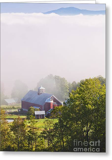 Fall Trees Greeting Cards - Vermont September Morning Greeting Card by Alan L Graham
