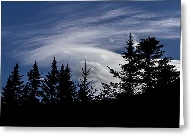Vermont Landscapes Greeting Cards - Vermont Tree silhouette clouds cloudscape Greeting Card by Andy Gimino