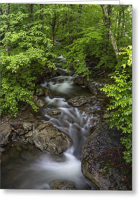 Vermont Photographs Greeting Cards - Vermont waterfall summer Mount Mansfield forest Greeting Card by Andy Gimino