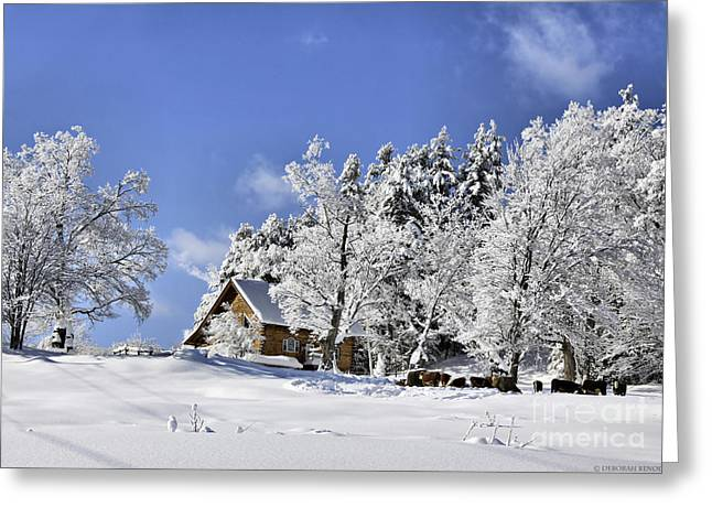 Winter Prints Greeting Cards - Vermont Winter Beauty Greeting Card by Deborah Benoit