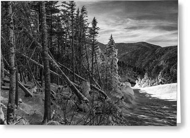 New England Snow Scene Greeting Cards - Vermont Winter Mount Mansfield Mountain forest snow black and white Greeting Card by Andy Gimino