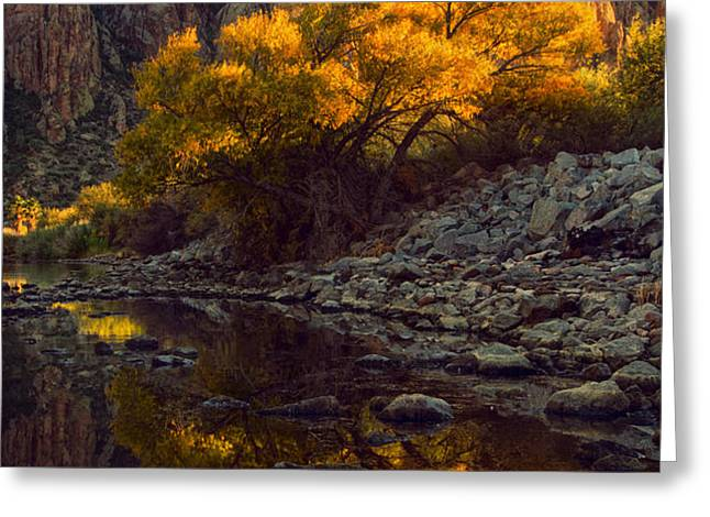 Vertical fall color reflections Greeting Card by Dave Dilli