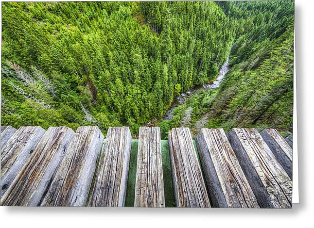 Pnw Greeting Cards - Vertigo Greeting Card by Peter Irwindale