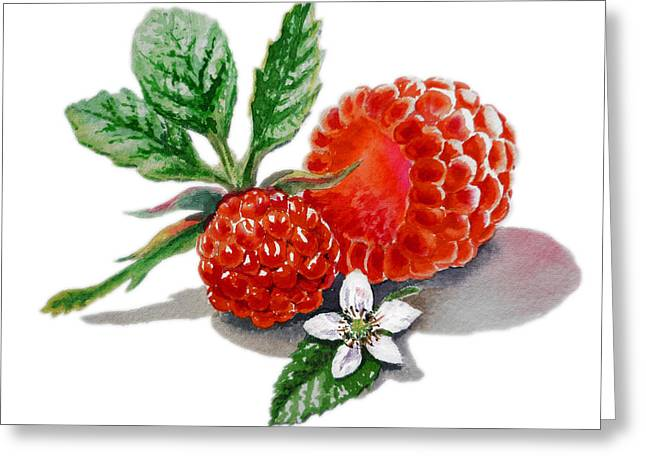 Vitamin Greeting Cards - Artz Vitamins A Very Happy Raspberry Greeting Card by Irina Sztukowski