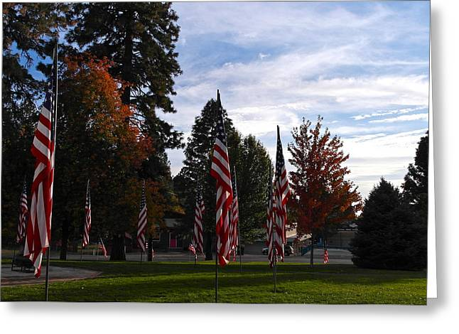 Vfw Greeting Cards - Veterans Day Is Done Greeting Card by Michele Myers