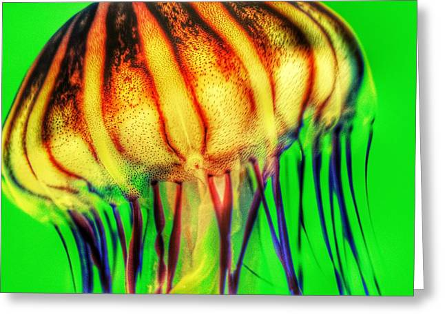 Vibrant Green Greeting Cards - Vibrant Jellyfish Greeting Card by Marianna Mills