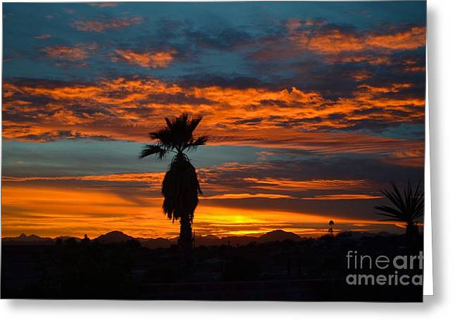 Catalina Mountains Greeting Cards - Vibrant Tucson Sunset Greeting Card by Rincon Road Photography