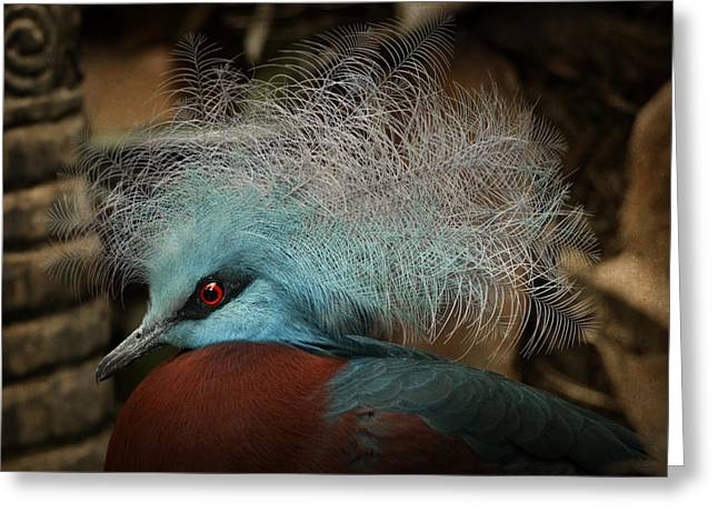 Decor Photography Pyrography Greeting Cards - Victoria Crowned Pigeon in tribal decor Greeting Card by Steppeland -