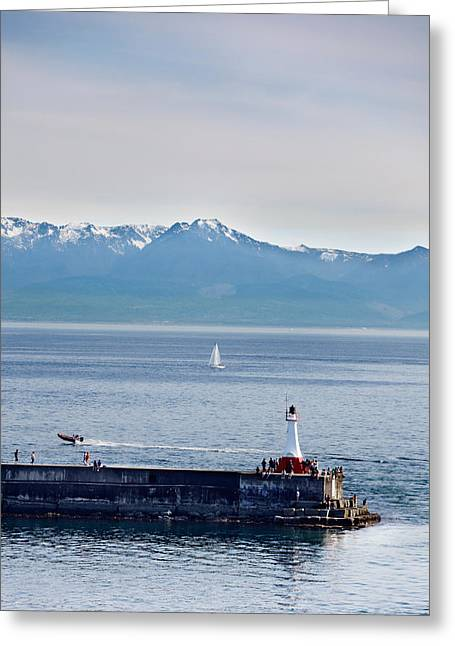 Sailboats In Harbor Greeting Cards - Victoria harbor Greeting Card by Jo Ann Snover