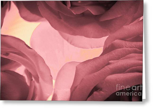 Purple Gladiolas Greeting Cards - Victorian Lace Greeting Card by Bobby Villapando