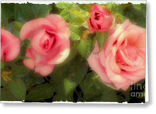 Whiteoaks Photography Greeting Cards - Victorian Rose Piece Greeting Card by Eva Thomas
