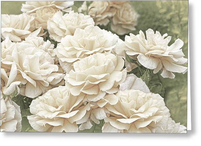 Ivory Flower Greeting Cards - Victorian Roses in the Garden Greeting Card by Jennie Marie Schell