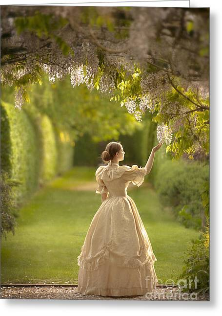 Wisteria In Bloom Greeting Cards - Victorian Woman Beneath A Wisteria Arbour Greeting Card by Lee Avison