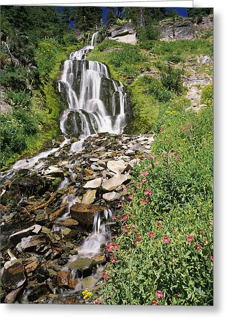 Crater Lake Greeting Cards - Vidae Falls In Crater Lake National Greeting Card by Panoramic Images