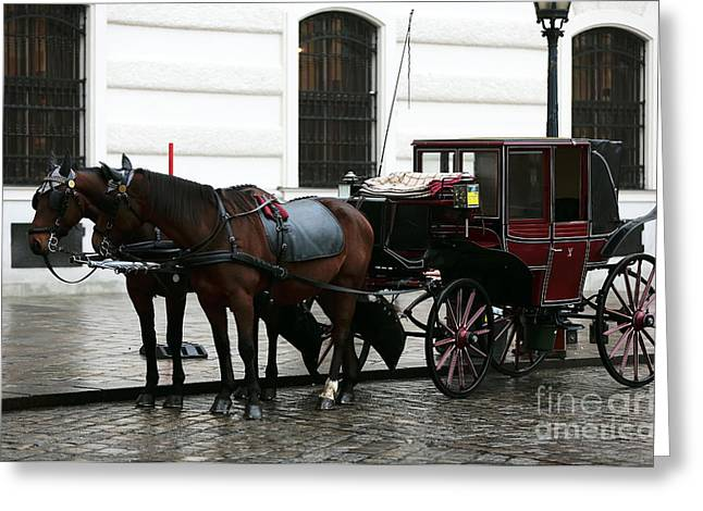 Old Vienna Greeting Cards - Vienna Carriage Greeting Card by John Rizzuto