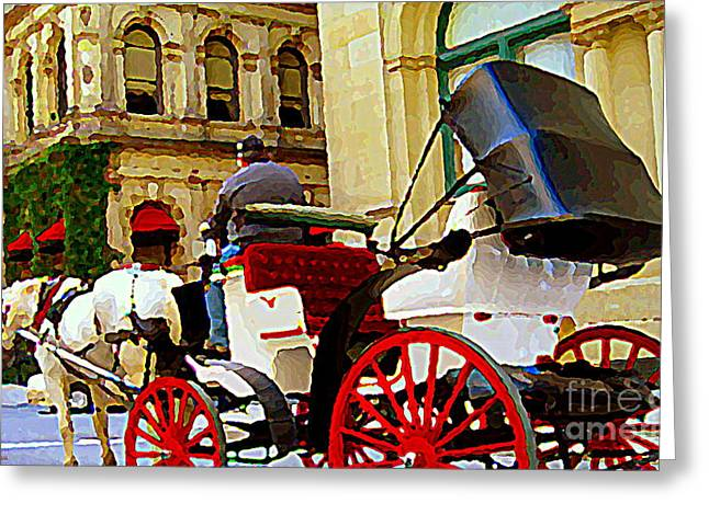 Vieux Port Caleche Scene White Horse Red Wheels Trots Along Cobbled Stones Streets Carole Spandau  Greeting Card by Carole Spandau