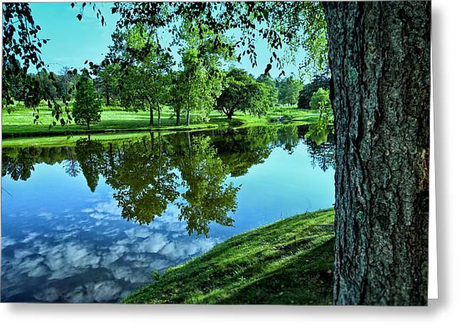 Peaceful Pond Greeting Cards - View From Accross the Lake Greeting Card by Tom Mc Nemar