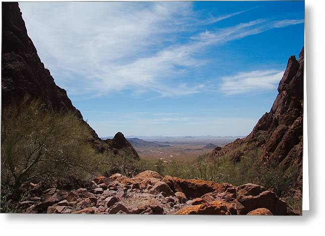 Wildlife Genre Greeting Cards - View from AZ to CA Greeting Card by Ed  Cheremet