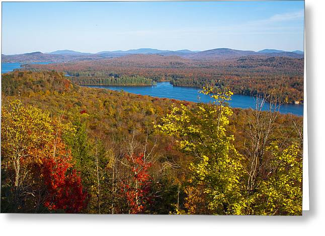 Fir Trees Greeting Cards - View From Bald Mountain Greeting Card by David Patterson