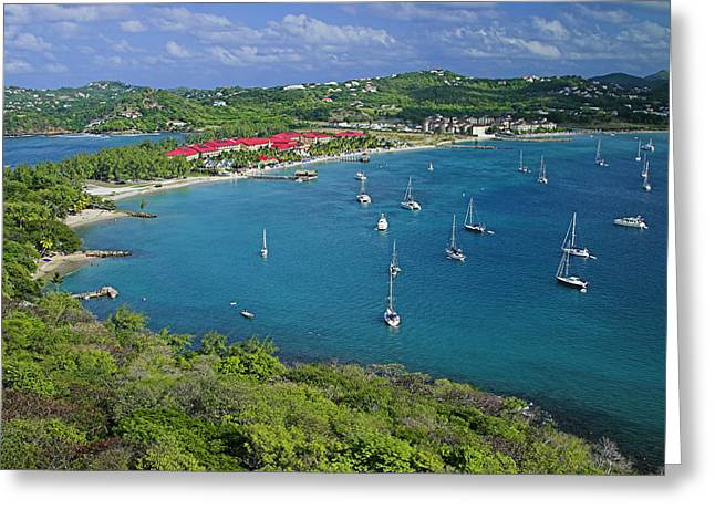 View From Fort Rodney-st Lucia Greeting Card by Chester Williams