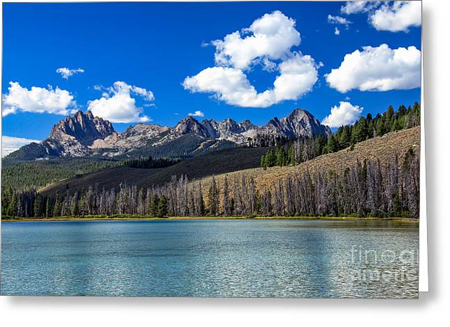 Haybales Greeting Cards - View From Little Redfish Lake Greeting Card by Robert Bales