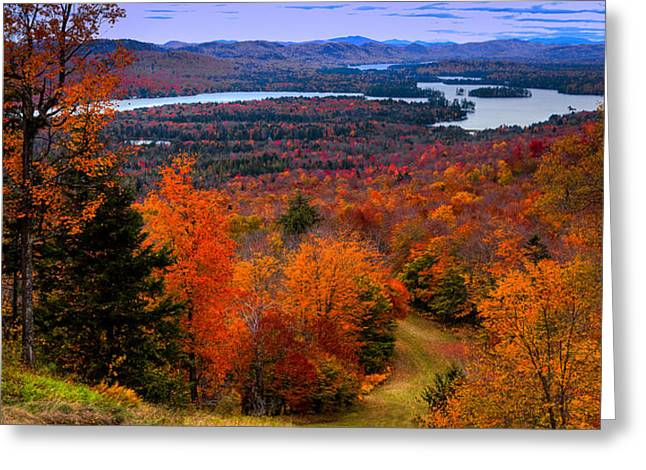 Colors Of Autumn Greeting Cards - View From McCauley Mountain II Greeting Card by David Patterson