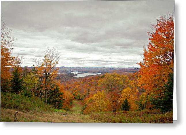 Aderondacks Greeting Cards - View From McCauley Mountain III Greeting Card by David Patterson