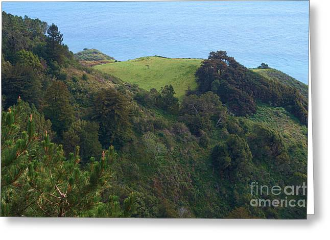 Big Sur Greeting Cards - View From Nepenthe in Big Sur Greeting Card by Charlene Mitchell
