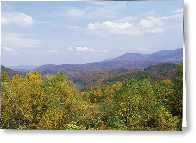 Tennessee River Greeting Cards - View From River Road, Great Smoky Greeting Card by Panoramic Images