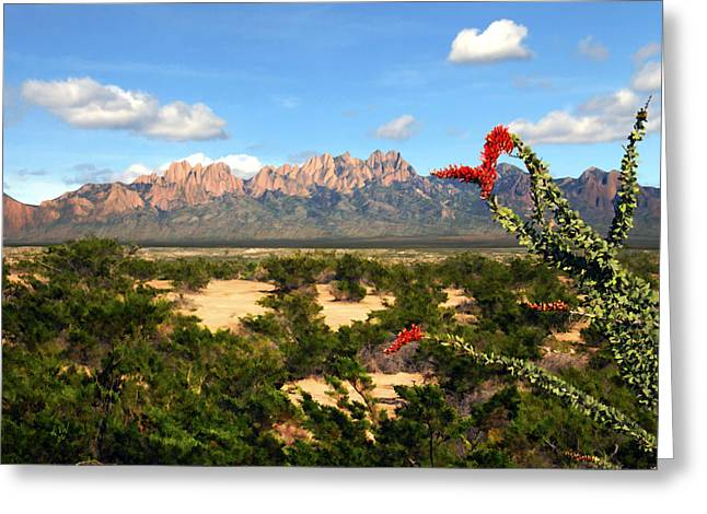 Las Cruces New Mexico Greeting Cards - View from Roadrunner Greeting Card by Kurt Van Wagner