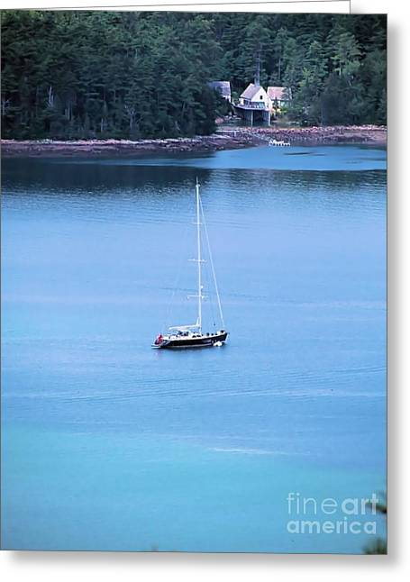 Somes Sound Greeting Cards - View From Sargent Greeting Card by Elizabeth Dow
