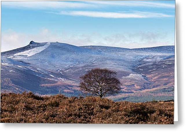 Royal Art Greeting Cards - View From Scolty Hill 2 Greeting Card by Mike Stephen