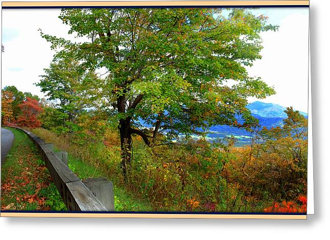 Blue Ridge Parkway In Fall Greeting Cards - View from the Blue Ridge Parkway Greeting Card by Constance Lowery