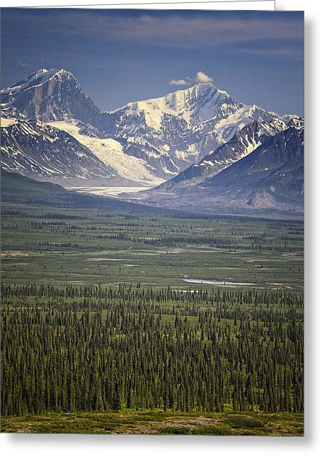 View From The Denali Highway In Alaska Greeting Card by Vicki Jauron