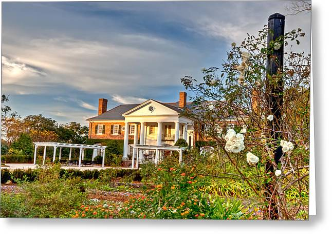 Boone Hall Greeting Cards - View From the Garden Greeting Card by Walt  Baker