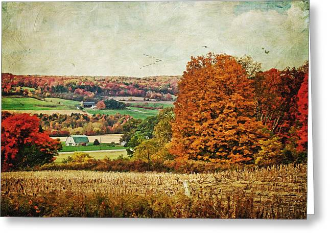 Seasonal Prints Rural Prints Greeting Cards - View from the hill... Greeting Card by Lianne Schneider