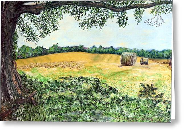 Bale Pastels Greeting Cards - View from the Shade Greeting Card by Brenda Stevens Fanning