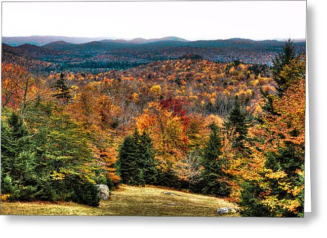 Aderondacks Greeting Cards - View from the top of McCauley Mountain Greeting Card by David Patterson