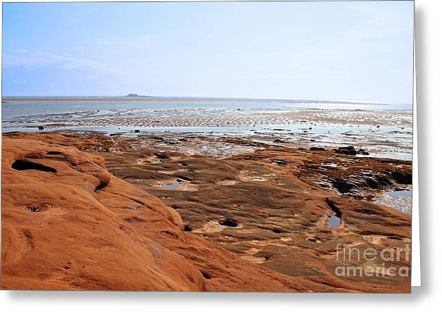 Minas Basin Greeting Cards - View from Thomas Cove Greeting Card by Kerry Gergen