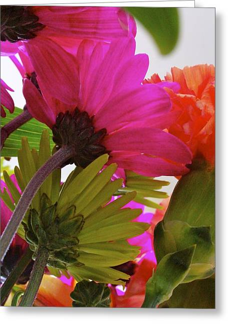 View From Underneath A Bouquet Of Flowers Greeting Card by Jennifer Lamanca Kaufman
