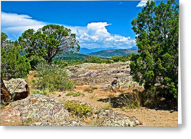 Warner Park Greeting Cards - View from Warner Point Trail in Black Canyon of the Gunnison National Park-Colorado  Greeting Card by Ruth Hager