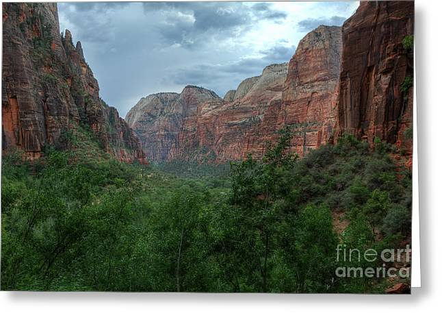 Weeping Greeting Cards - View From Weeping Rock Greeting Card by Eddie Yerkish