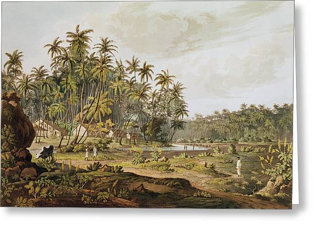 Vue Greeting Cards - View Near Point Du Galle, Ceylon, Engraved By Daniel Havell 1785-1826 Published In 1809 Coloured Greeting Card by Henry Salt
