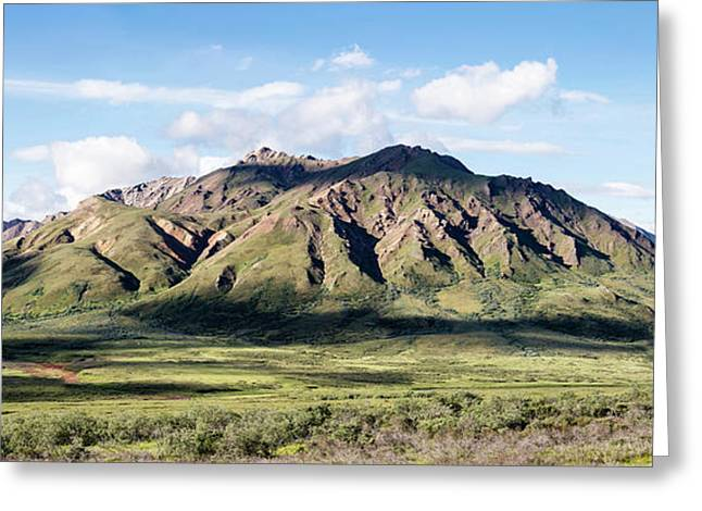 View Of Alaska Range Near Polychrome Greeting Card by Panoramic Images