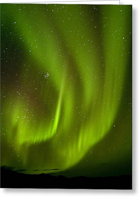 Light And Dark Greeting Cards - View Of Aurora Borealis Dancing Above Greeting Card by Carl Johnson