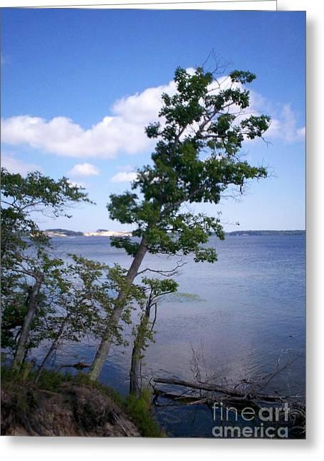 Hamlin Lake Greeting Cards - View of Hamlin Lake Greeting Card by Kimberly Hamlin