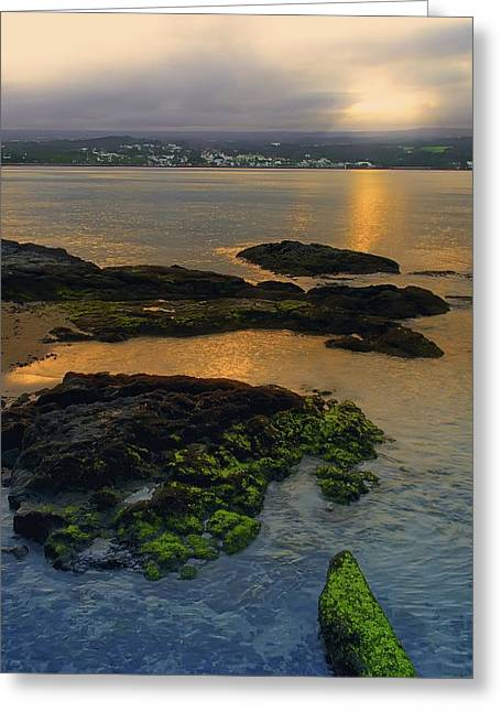 Hilo Greeting Cards - VIEW of HILO CITY from COCONUT ISLAND SHORELINE Greeting Card by Daniel Hagerman